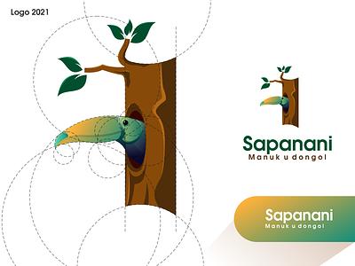 Sapanani Logo ux vector ui illustration logotype design logo logo design branding icon