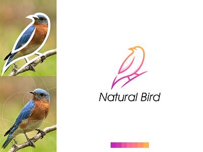 Natural Bird Logo colorful bird grid modern minimal simple vector illustration lettering identity brand app logo design branding
