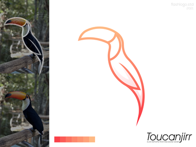 Toucanjirr Logo animals toucan grid modern clean minimal simple vector illustration lettering identity brand app logo design branding