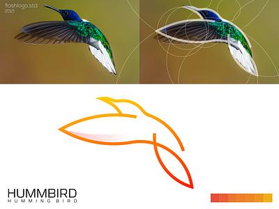 Hummbird Logo humming bird animals elegant color grid modern clean minimal simple vector illustration lettering identity brand app logo design branding