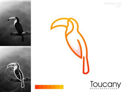 Toucany Logo graphic design colorful color toucan bird animals clean modern grid minimal simple vector illustration lettering logo identity brand app design branding