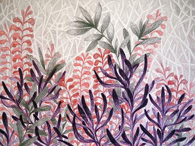 Succulent Forest drawing colored pencil botanical nature succulents houseplants plants illustration
