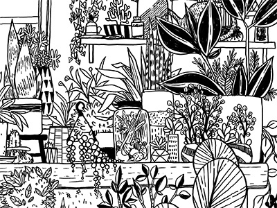 Potting Shed houseplants nature gardening plants lineart ink drawing illustration