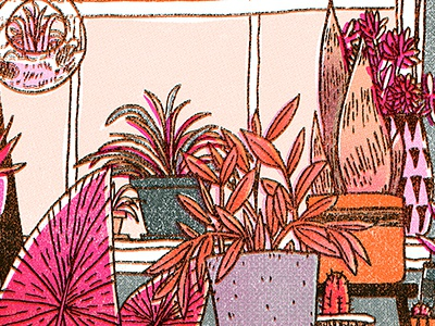 Potting Shed houseplants drawing nature plants riso illustration