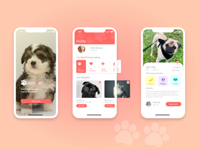 Pet Adoption and Donation concept