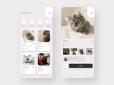 🙀 Pet Adoption App 🐱 clean design concept user interface adoption pet animals material minimal icons line ios figma ui app mobile application