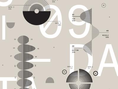 Data Dude infographics typography graphs type data