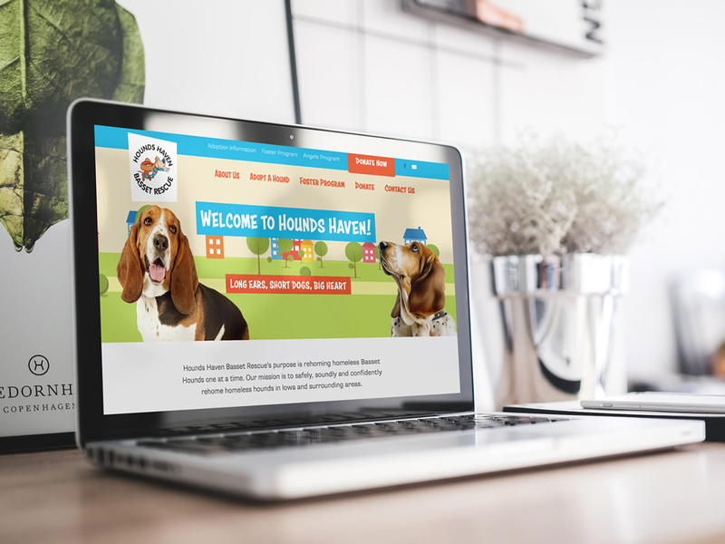 Animal Rescue Organization Website color basset hound web design website wordpress branding