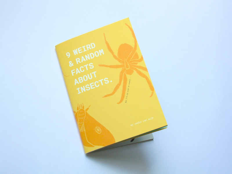 Zine '9 Weird and Random Facts About Insects illustration book cover zine design book design insect facts insect zines booklet book zine