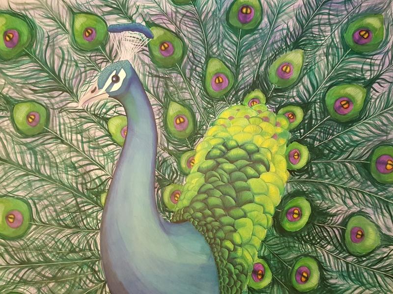 Peacock markers watercolor peacock illustration creative animal