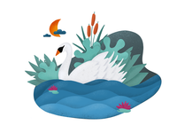 Swan Procreate Illustration
