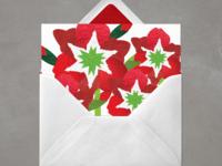 Amaryllis christmas flowers amaryllis christmas card note card greeting card