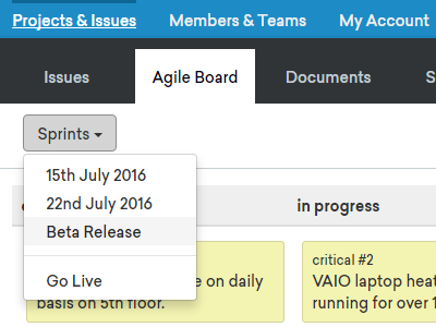 Sprint filtering card issues agile kanban project management issue tracker