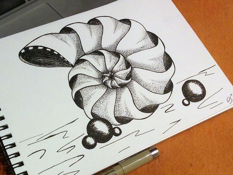 Sketch - shell sketch paper pen art shell drawing