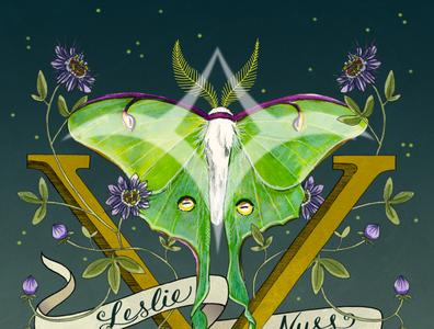 Leslie Nuss The Album V