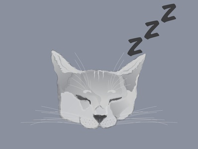 Instagram Story Highlight Icon - Sleepy Cat