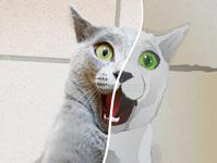 Cartoon me Challenge: Saya, my cat