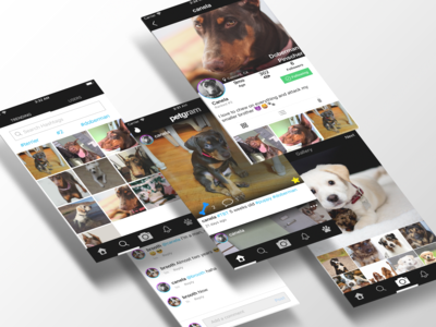Pet Social App Idea Mockup - Instagram for pets