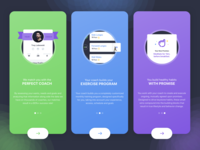 Intro slides / Ladder
