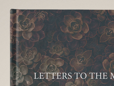 Teaser Photo/Poems Publication project teaser poems photos poem photo publication book