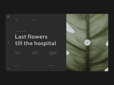 Last Flowers till the hospital typo ui ux web web  design leaf plants nature landing page header geometric design grid minimalism typography layout minimal design composition art geometric flat