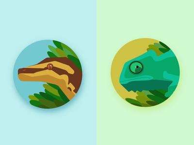 Australian icons#3 Reptilies