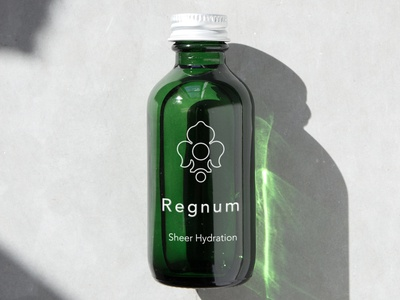 Regnum Modern Concept