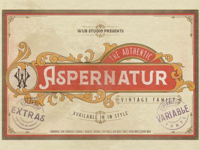 Aspernatur Vintage Family Typeface