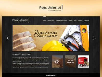 Pegs Unlimited fun case study photoshop web website redesign ui ux design project