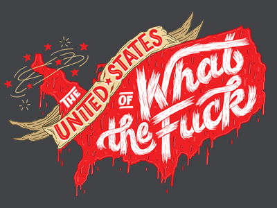 The United States of WTF melting typography fuck hillary trump politics usa united states script hand lettering lettering