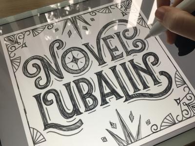 Workbook 14: Novel Lubalin