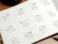 Zoomcar Z Sketches