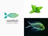Mintfish Premium Finance