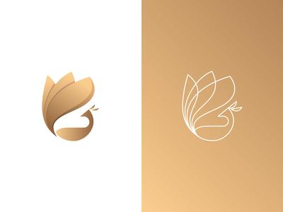 G + Peacock