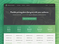 SproutVideo Pricing Page Case Study