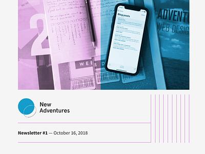 Newsletter identity blue pink ulysses letterhead brand and identity brand newsletter naconf new adventures