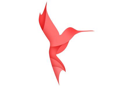 Logo Kolibri corporate design corporate branding branding brand design brand logo logodesign