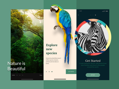 Nature App Onboarding Concept UI natural green uidesign dailyui concept clean art 2d app ux ui  ux logo product design mobile app walkthrough onboarding nature photography dark mode ios app design app design
