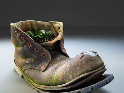 Old Boot with Plants 3D Model