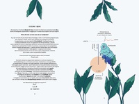 Planet Earth — An infographic children book – Pages