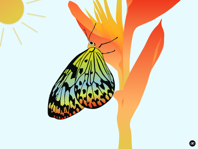 Butterfly illustration meditate biodiversity zen flower illustration flower peaceful sunny day sun butterfly illustration butterfly colors digital art colorful gradient illustration digital illustration graphic design web design figma