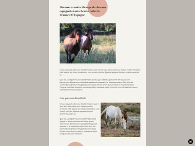 Horse breeding  |  Breeding section wordpress theme wordpress design html template theme design website website design desktop design layout design stud farm breeding horse breeding horse ui minimal graphic design web design figma