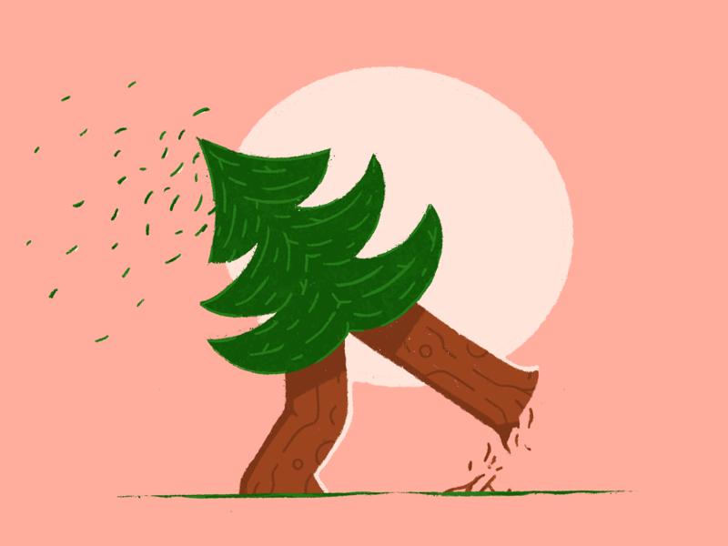 If a tree walks in the forest, did it even tree? illustration nature walk tree