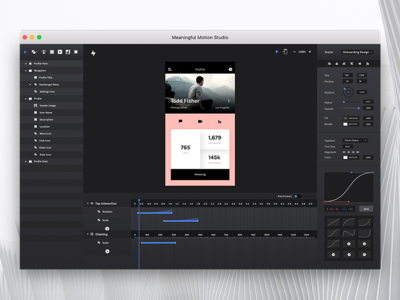 Meaningful Motion Studio Interface