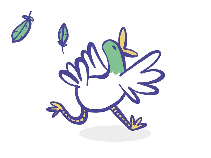 Duck feather run duck