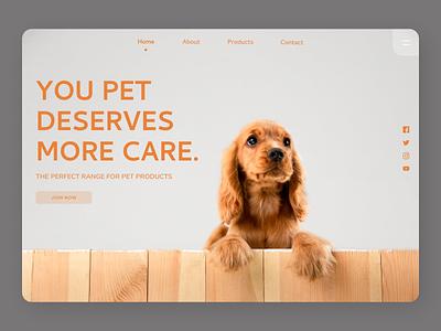 Pets Care Web Design branding logo accessories landing page concept landing page design ui