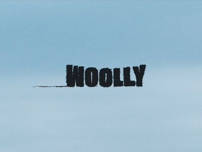 Woolly - Logo and Brand Identity wool hand lettering logo hand lettering lettering graphic design illustration identity design branding logo