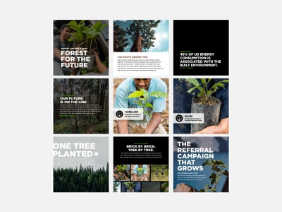 One Tree Planted x Mortarr typogaphy one tree planted social media sustainability environment climate branding design
