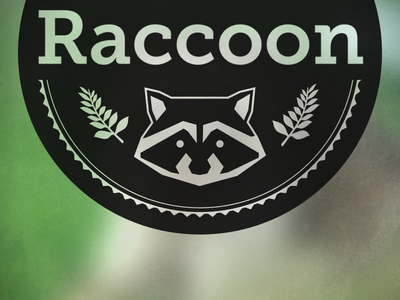 Raccon logo draft raccoon logo branding draft test wip