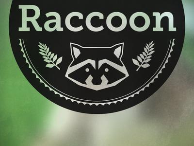 Raccon logo draft